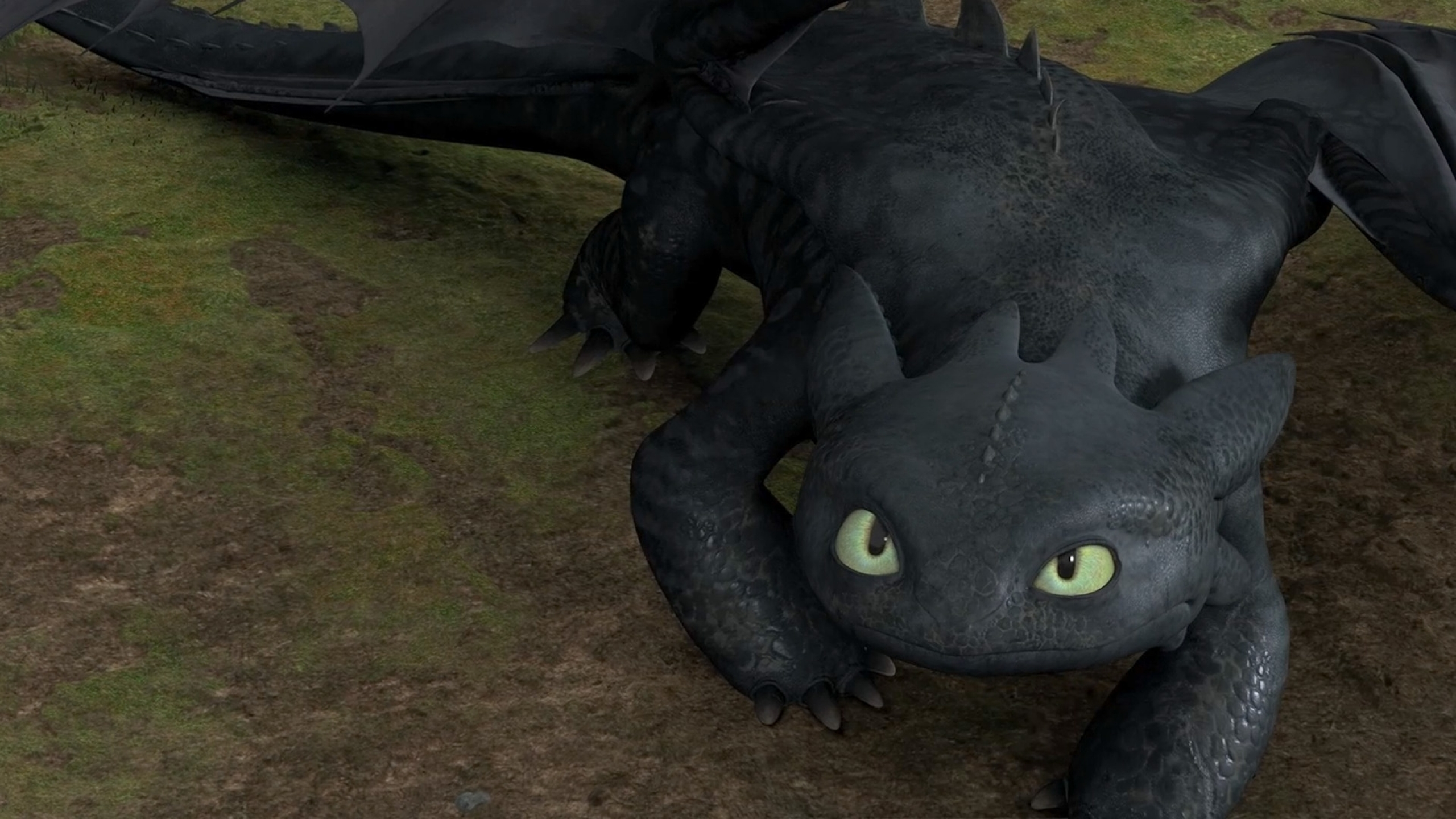 1 Toothless Hd Wallpapers  Background Images - Wallpaper -2663