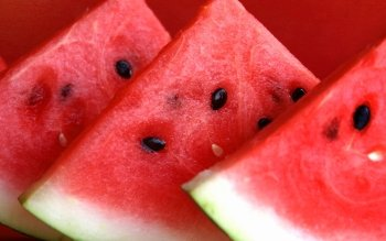 Food - Watermelon Wallpapers and Backgrounds ID : 385065