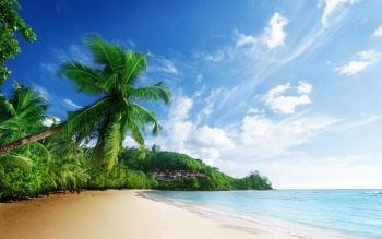 Earth - Beach Wallpapers and Backgrounds ID : 385793