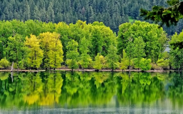 Earth Reflection HD Wallpaper | Background Image