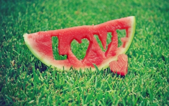 Alimento - Watermelon Wallpapers and Backgrounds ID : 389624