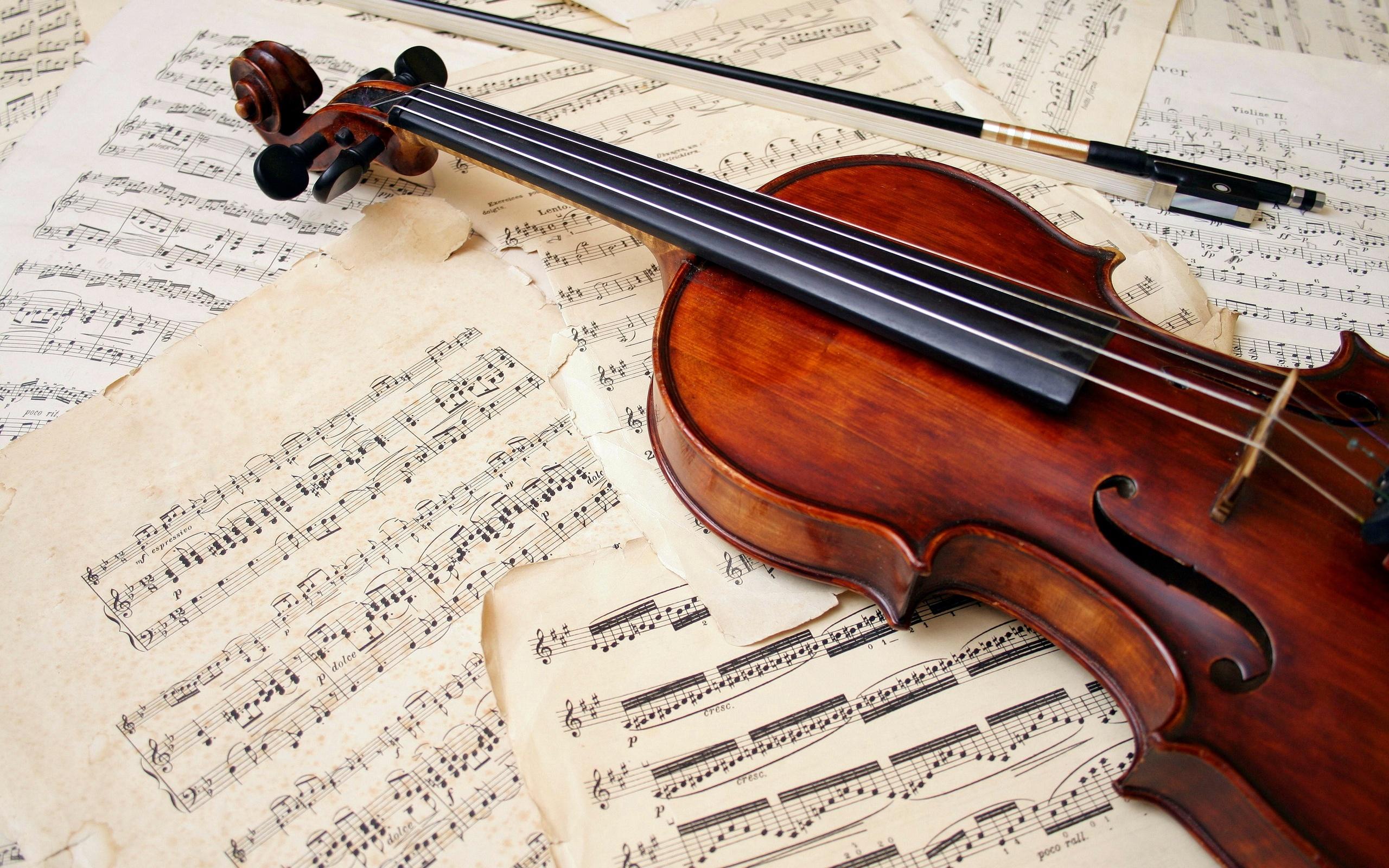 Best 25  Violin instrument ideas on Pinterest | Violin music ...