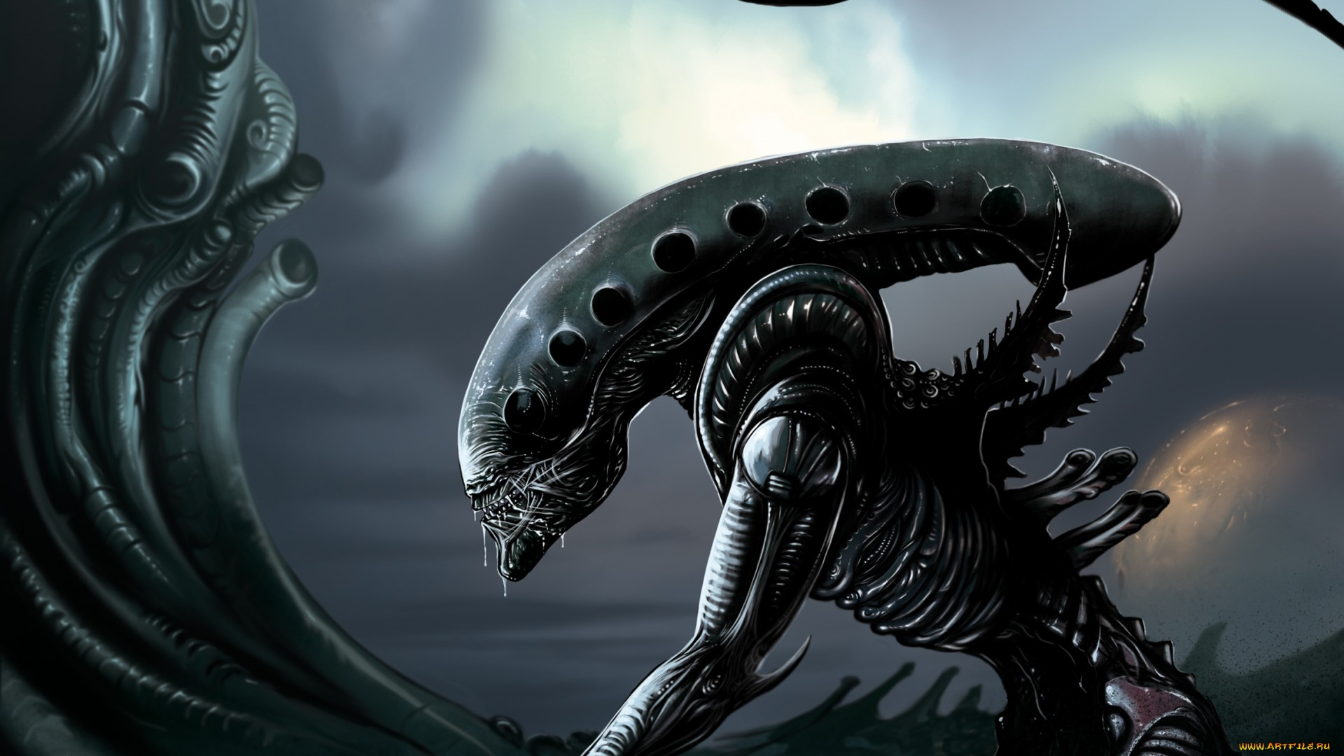 Alien Full HD Wallpaper And Background Image