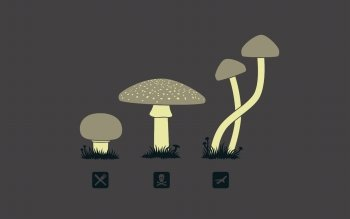 Юмор - Mushrooms Wallpapers and Backgrounds ID : 398940