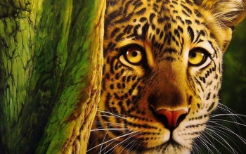 Animalia - Leopard Wallpapers and Backgrounds ID : 399947