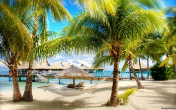 Photography - Tropical Wallpapers and Backgrounds ID : 401230