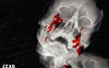 Dark - Skull Wallpapers and Backgrounds ID : 402005