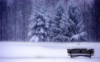 Photography - Winter Wallpapers and Backgrounds ID : 404924