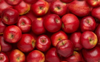 Alimento - Apple Wallpapers and Backgrounds ID : 405338