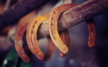 Photography - Horseshoe Wallpapers and Backgrounds ID : 405896