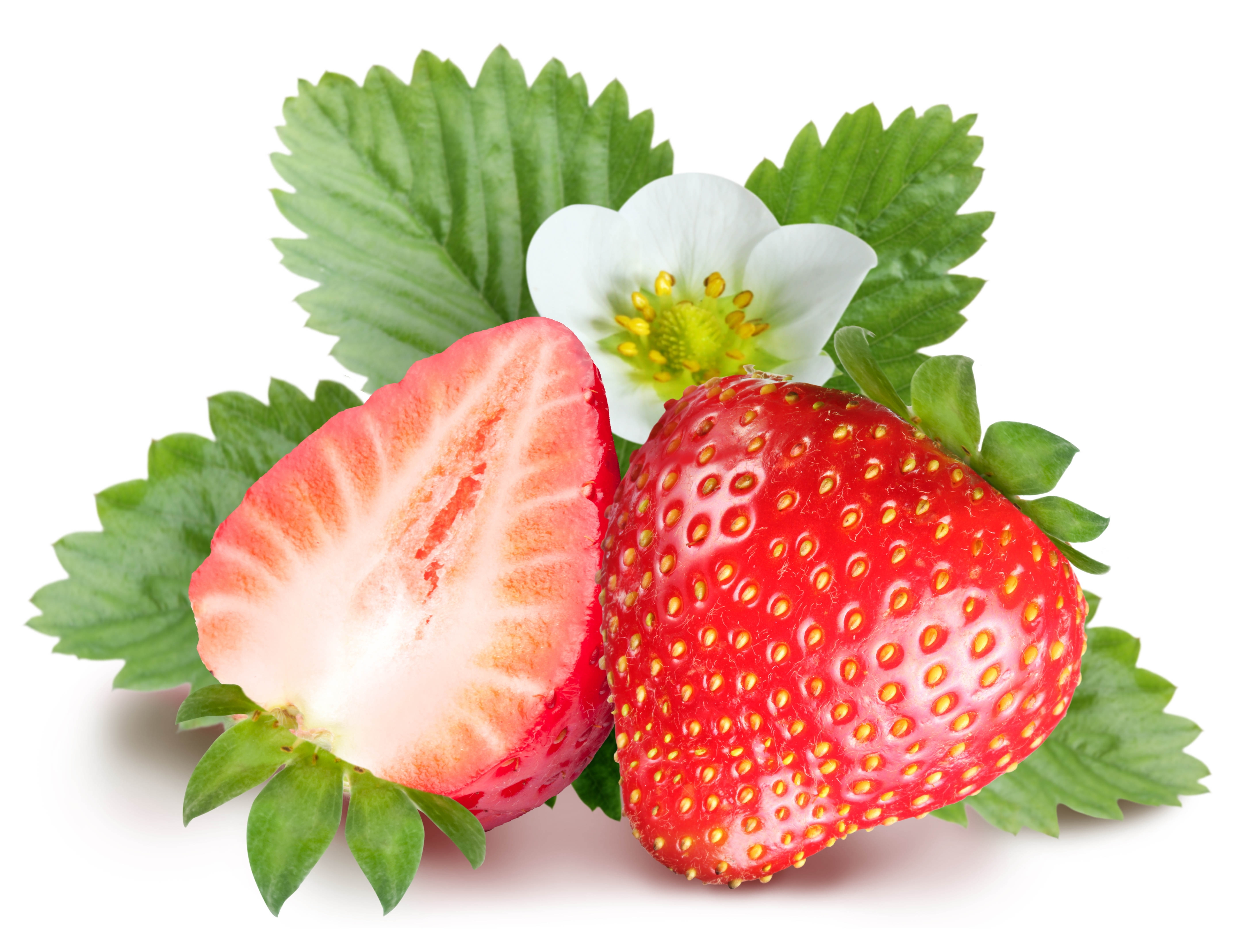 strawberry wallpapers for mobile