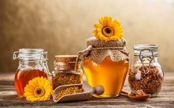 Food - Honey Wallpapers and Backgrounds ID : 408944