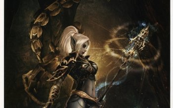 Video Game - Lineage II Wallpapers and Backgrounds ID : 410367