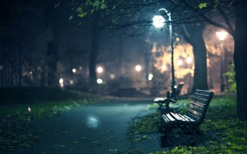 Man Made - Bench Wallpapers and Backgrounds ID : 410698