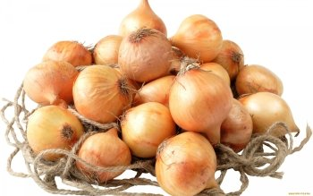 Alimento - Onion Wallpapers and Backgrounds ID : 416180