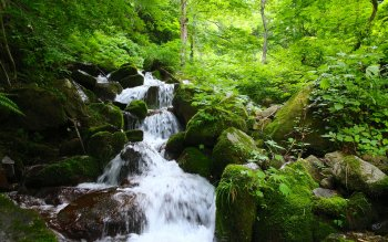 Earth - Stream Wallpapers and Backgrounds ID : 418334