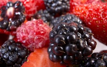 Alimento - Berry Wallpapers and Backgrounds
