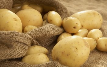 Alimento - Potato Wallpapers and Backgrounds ID : 420163