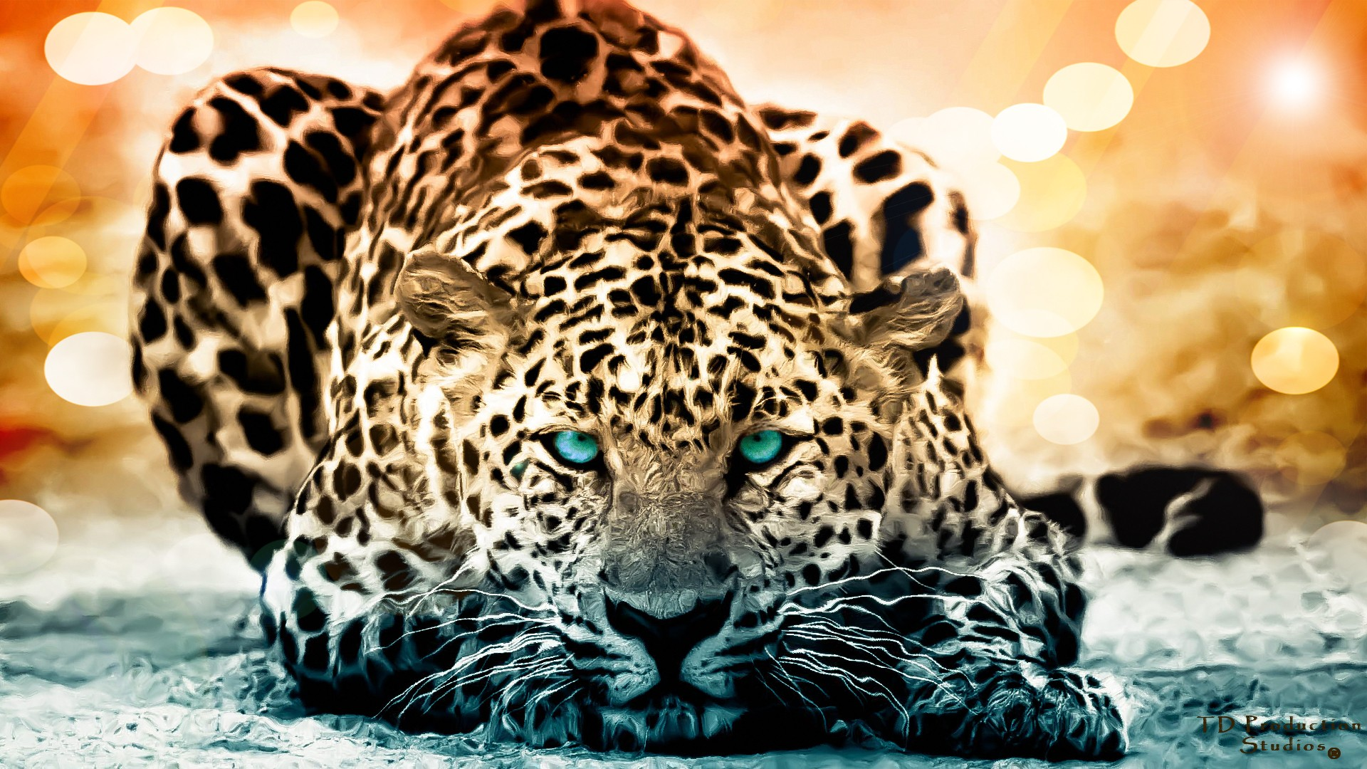 Cool Animal Wallpapers Hd: Backgrounds - Wallpaper Abyss
