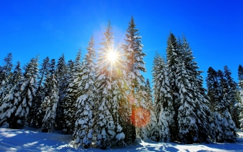 Earth - Winter Wallpapers and Backgrounds ID : 424031