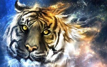 Tier - Tiger Wallpapers and Backgrounds ID : 424867