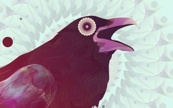 Artistic - raven Wallpapers and Backgrounds