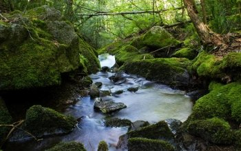 Earth - Stream Wallpapers and Backgrounds ID : 431342
