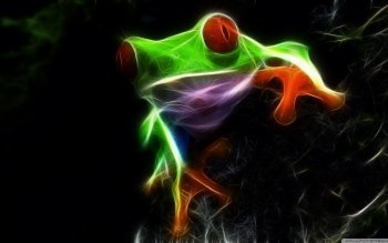 Animal - Red Eyed Tree Frog Wallpapers and Backgrounds ID : 434102