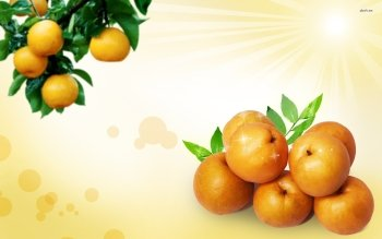 Food - Apricot Wallpapers and Backgrounds ID : 434538