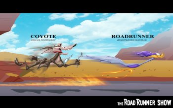 Cartoon - Road Runner Wallpapers and Backgrounds ID : 434683