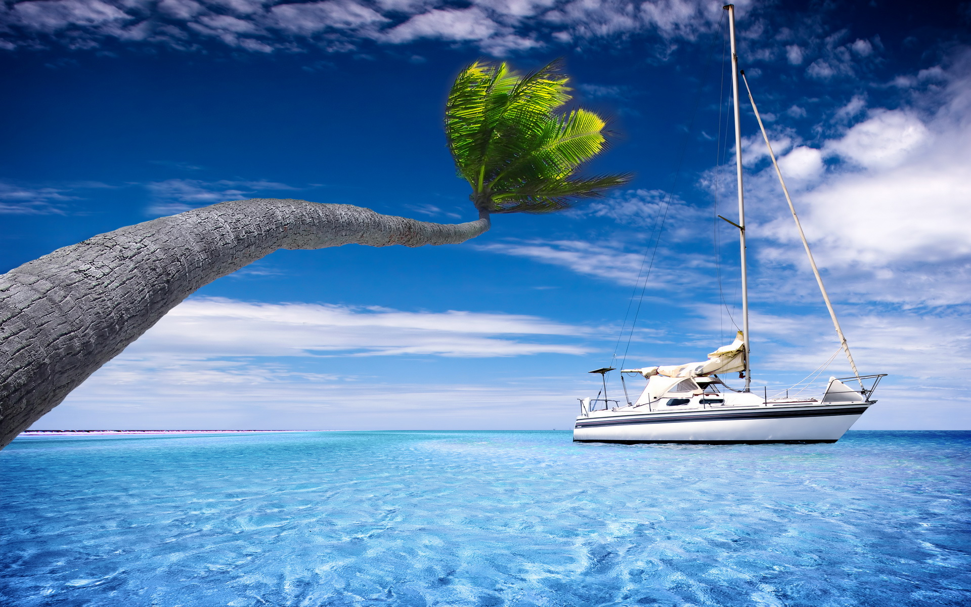 Sailboat Holiday Summer 4k Hd Desktop Wallpaper For 4k: Sailboat HD Wallpaper