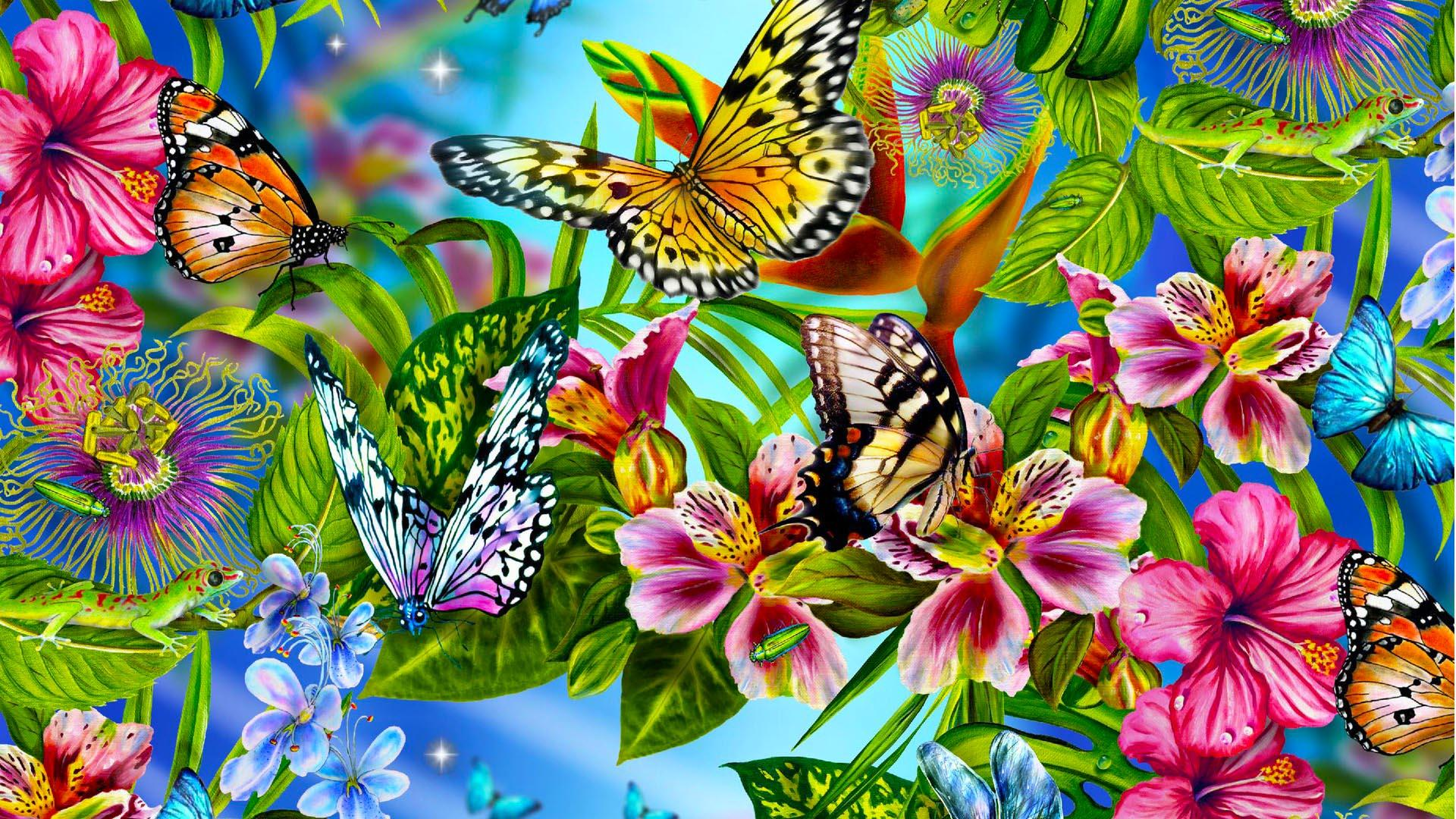 Schmetterlinge HD Wallpaper