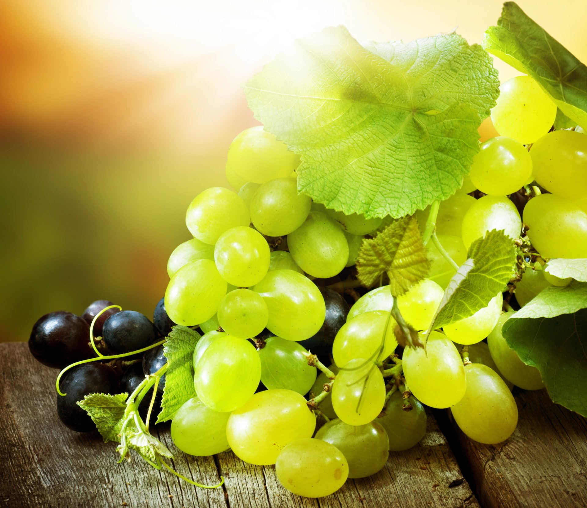 Grapes HD Wallpaper