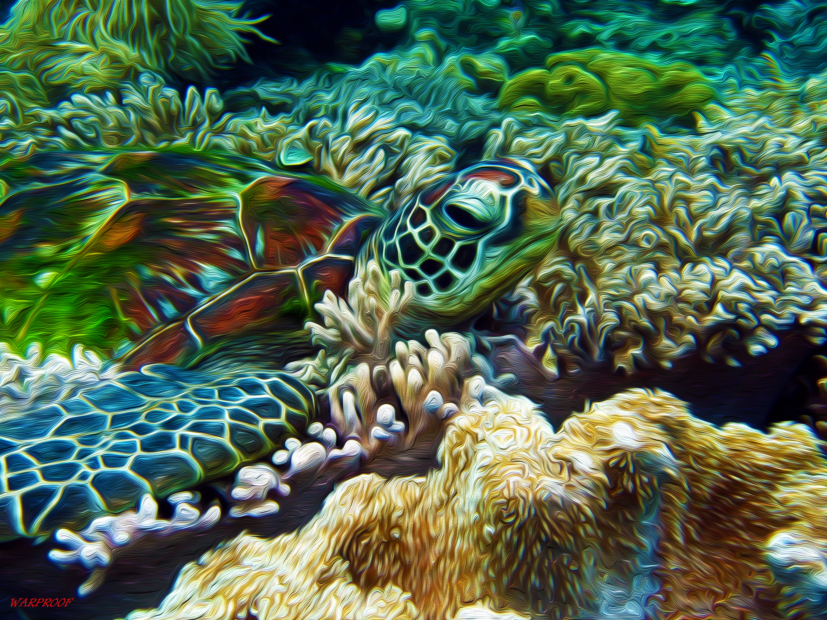 Sea Turtles Background images in Collection Page