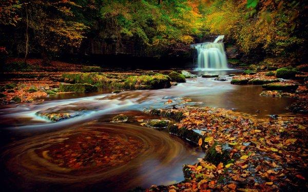 Earth Waterfall Waterfalls Fall Leaf Forest Creek HD Wallpaper | Background Image