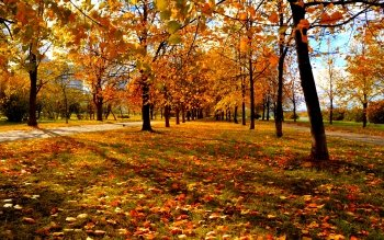 Earth - Autumn Wallpapers and Backgrounds ID : 444081