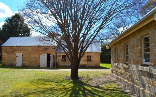 Man Made Eskbank House House Building Lithgow Tree HD Wallpaper | Background Image
