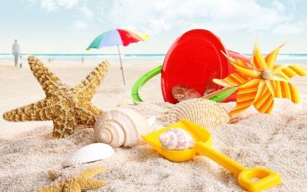 Photography Holiday Summer Starfish Shell HD Wallpaper   Background Image