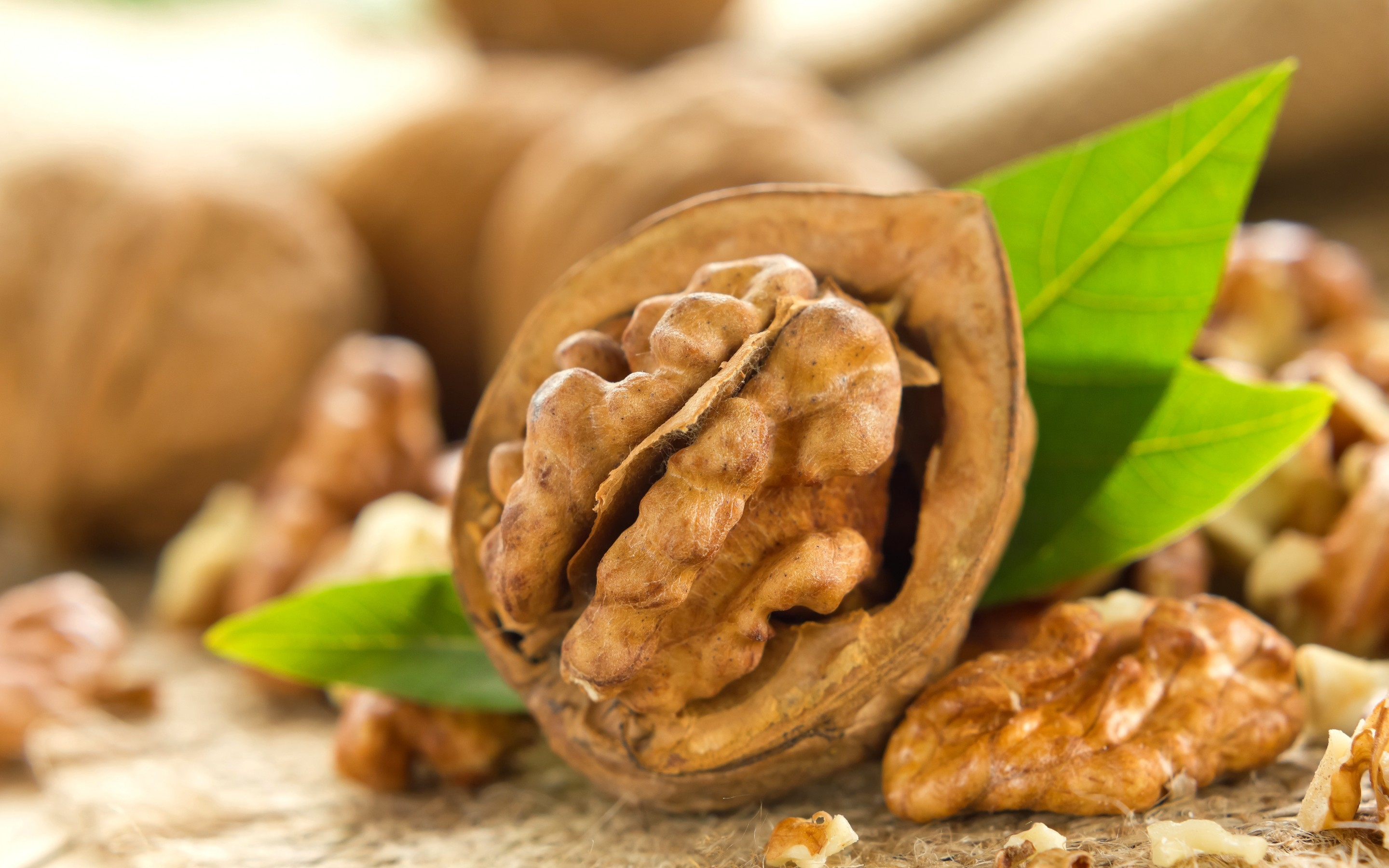 Health, Skin and Hair benefits of Walnut - Jayshree For you