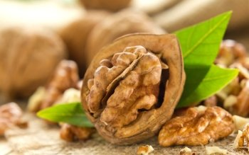 Alimento - Walnut Wallpapers and Backgrounds ID : 450463