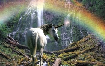 Fantasy - Unicorn Wallpapers and Backgrounds ID : 451038