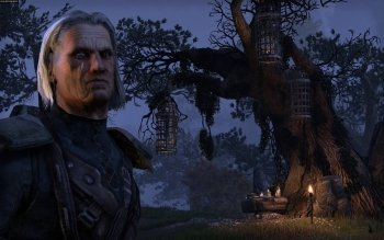 Video Game - The Elder Scrolls Online Wallpapers and Backgrounds ID : 452617