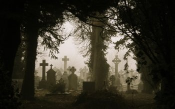 Dark - Cemetery Wallpapers and Backgrounds ID : 453764