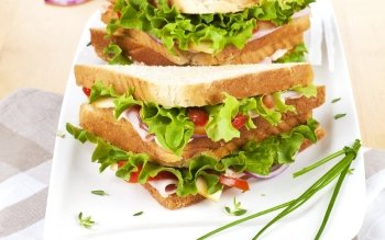 Food - Sandwich Wallpapers and Backgrounds ID : 456984