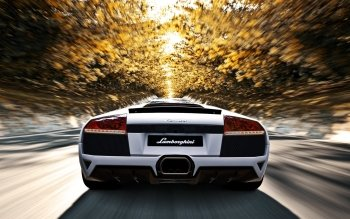 Vehicles - Lamborghini Wallpapers and Backgrounds ID : 457717