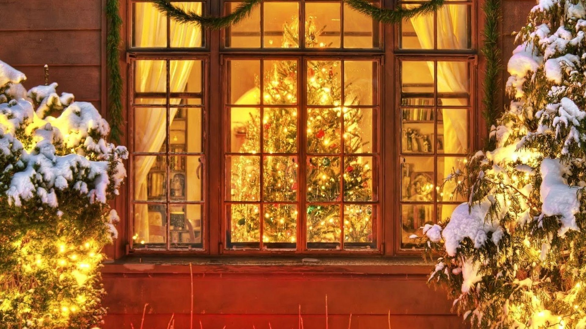 Holiday - Christmas  Christmas Tree Christmas Lights Window Wallpaper