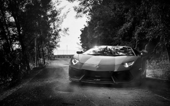 Vehicles - Lamborghini Aventador Wallpapers and Backgrounds ID : 464246