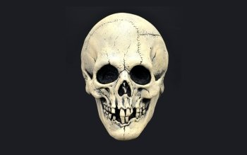 Dark - Skull Wallpapers and Backgrounds ID : 466873