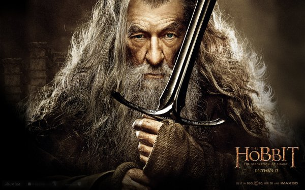 Movie The Hobbit: The Desolation of Smaug Gandalf HD Wallpaper | Background Image