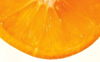 Food - Orange Wallpapers and Backgrounds ID : 478673